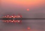 Ejemplos asombrosos de Fotografía de Reflexión