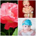 Picmonkey editar fotos collages gratis