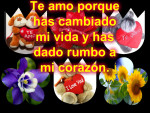 Collage de fotos y texto gratis
