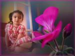 Fotomontaje con flores de geranio