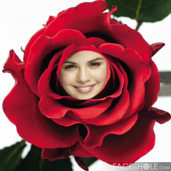 Fotomontajes En Rosas Editar Fotos Online