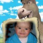 Marco para fotos con el burro de película shrek