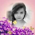 Marco para fotos con bellas flores moradas
