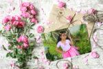Marco de fotos con unas bellas flores rosadas y una carta!